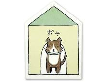 犬ぽち ボーダーコリー